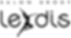lejdis-logo.png