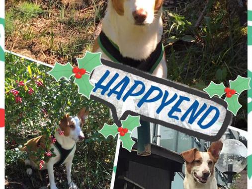 Dunja's Happyend