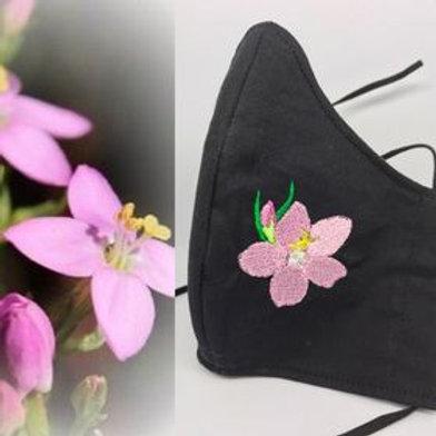 Centaury flower on black fabric