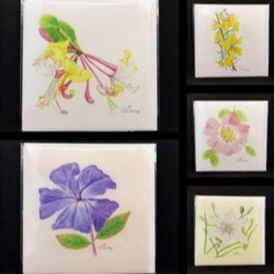 Bach Flowers blank art cards - pack of 5