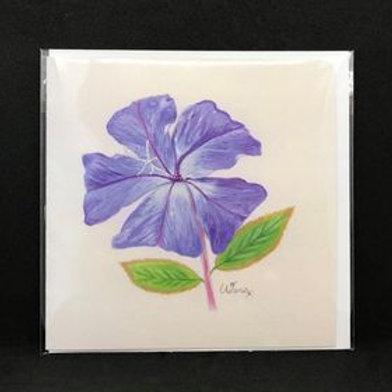 Bach Flower art cards - blank - pack of 5