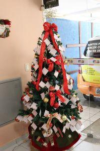 GACC-RN Inicia Campanha Árvore da Alegria