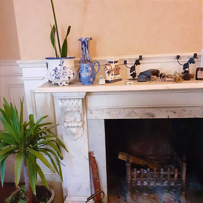 A Georgian fireplace with plants and ornaments.