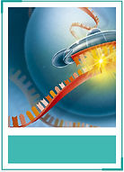 MicroRNA-AgomirAntagomir.jpg