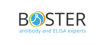Boster-new-logo.png