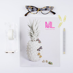 spring catalog launch instagram