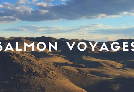 10 raisons de confier ses recherches à Salmon Voyages