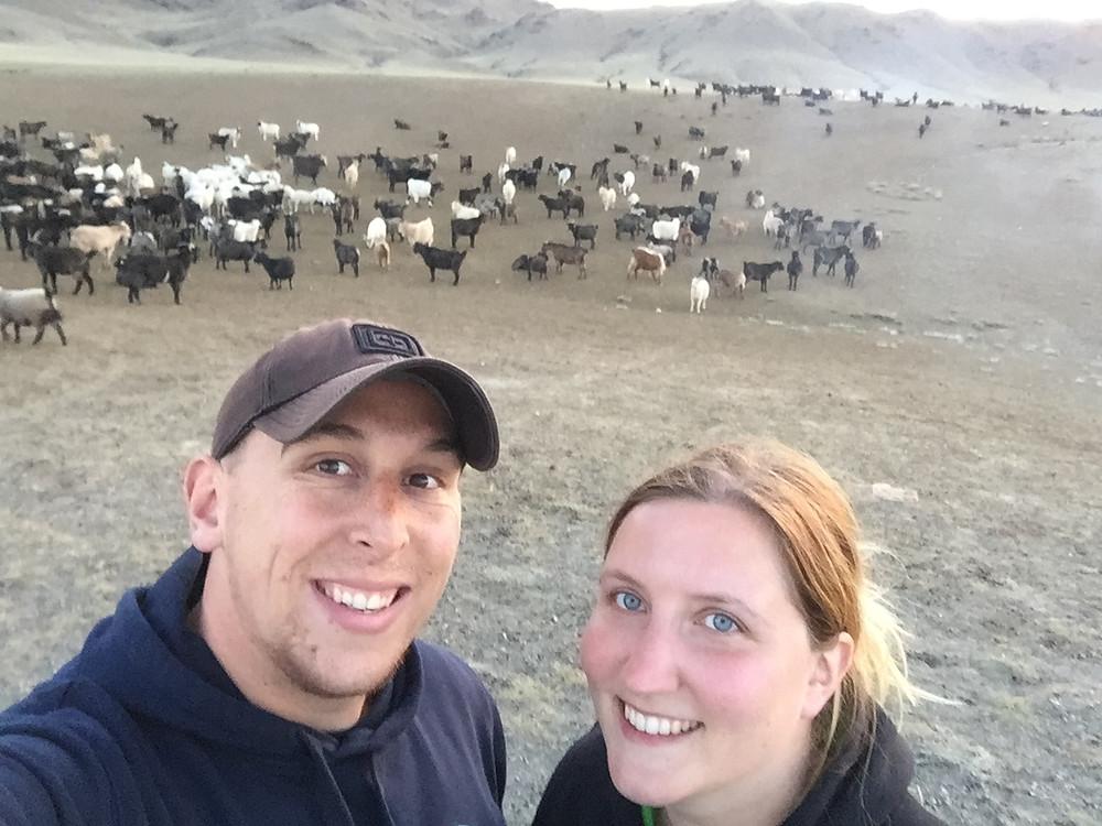 Volontariat dans le désert de Gobi