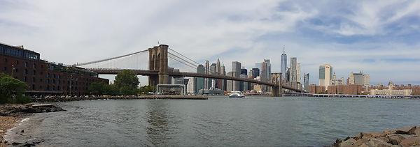 Salmon Voyages New-York City.jpg