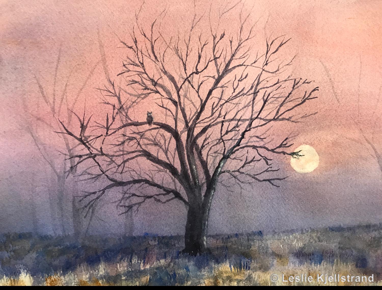November owl