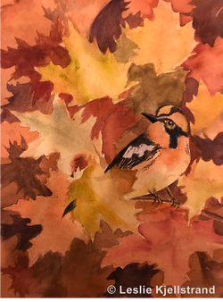 Fall Bird