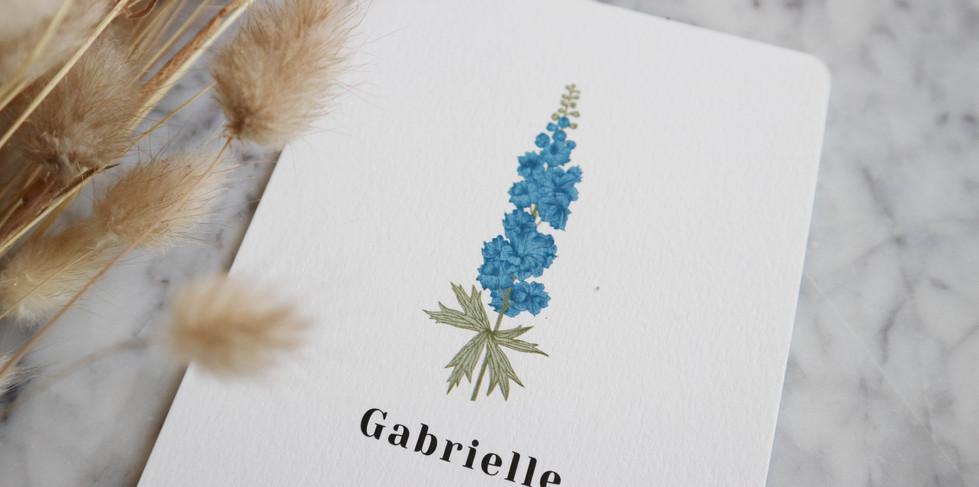 Gabrielle1.jpg