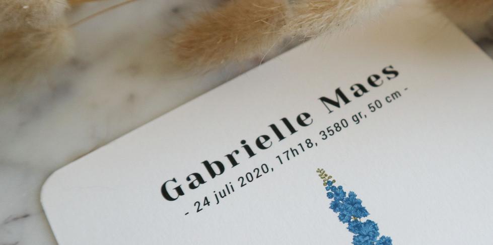 Gabrielle2.jpg