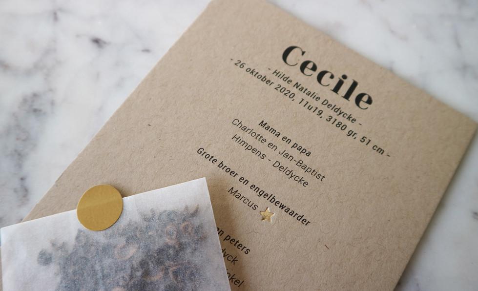 Cecile2.jpg