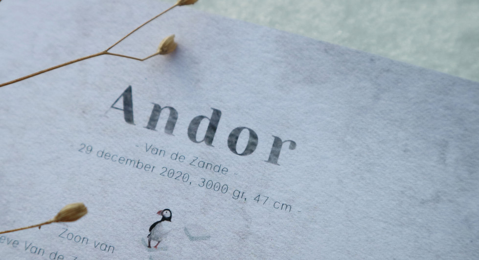 Andor detail 2.jpg