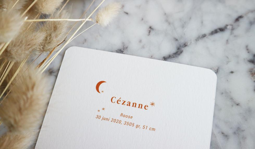 Cezanne detail omzijde.jpg