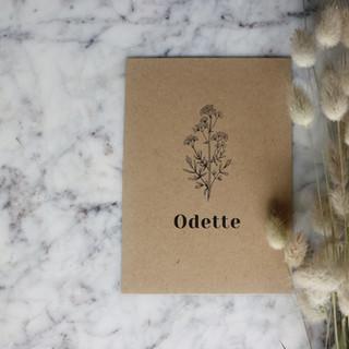 Odette-geboortekaartje-studio-ent.jpg