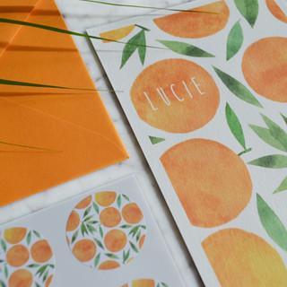 Lucie-sinaasappeltjes-illustratie-geboor