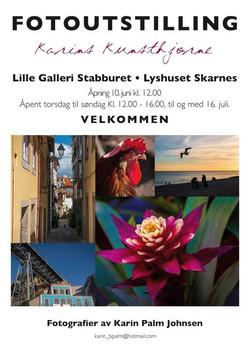 Karin Palm Johnsen