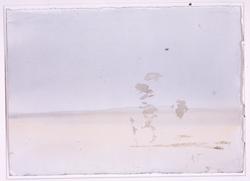Akvarell - Myrens ensomhet