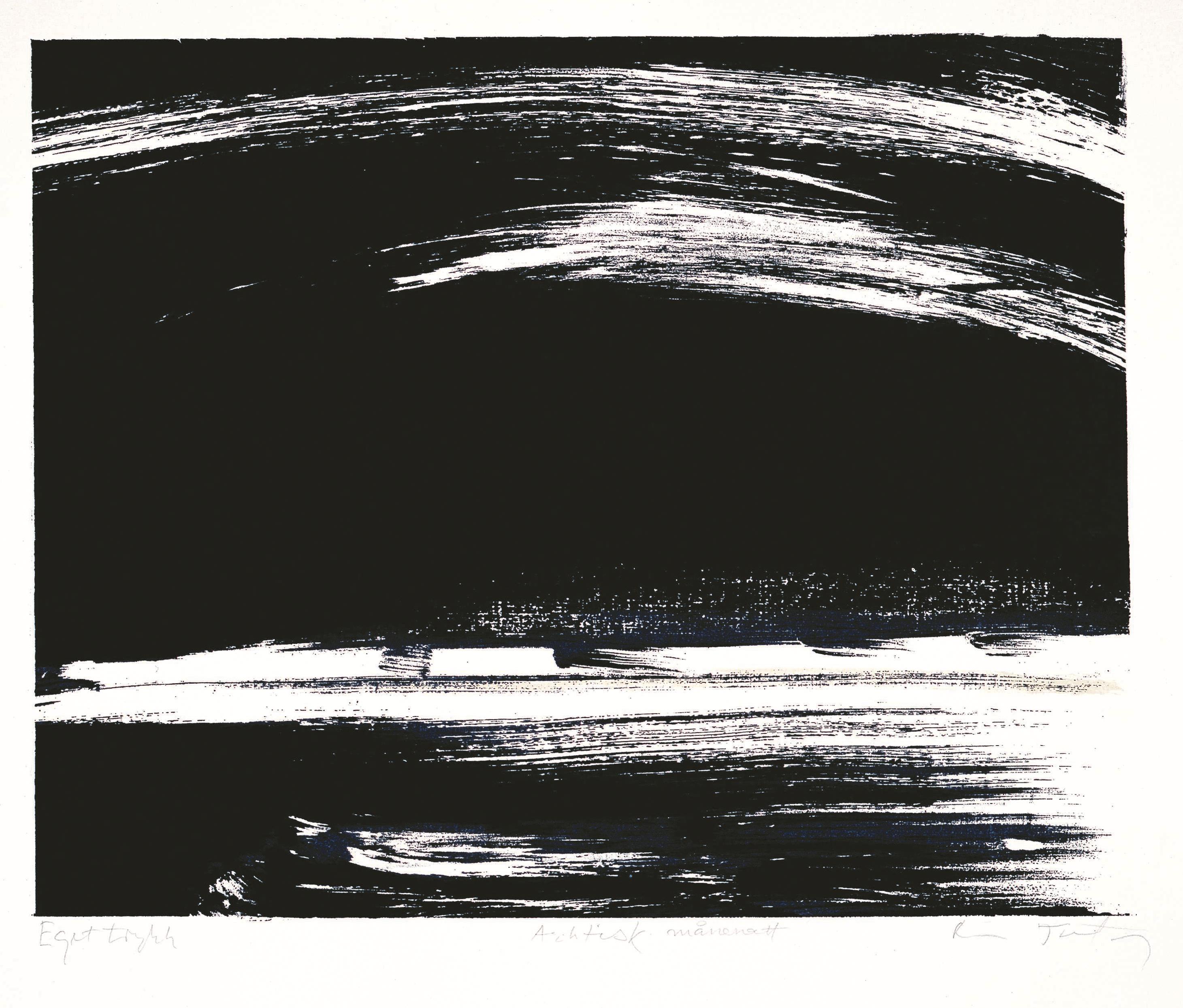 Grafisk trykk - Arktisk månenatt