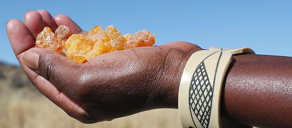 01 Desert Secrets Myrrh Pic 3.jpg