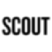 scout-logo.png
