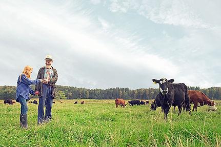 broschyrbild_landskap_72ppi.jpg