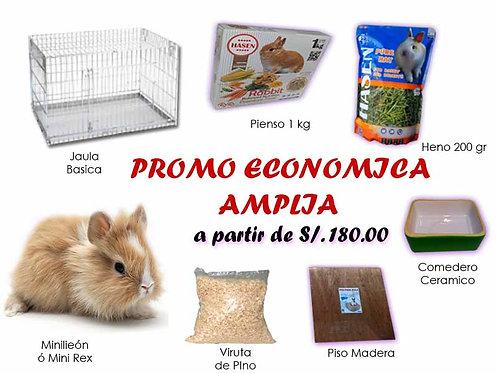 Promo Económica Ampliada
