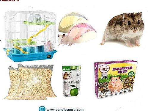 Hamster - Combos  #4