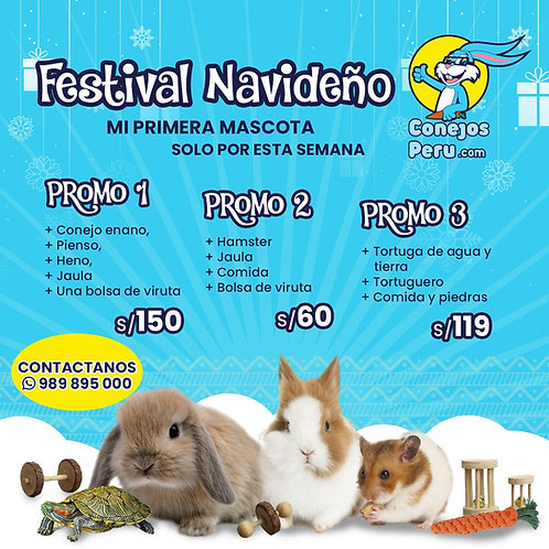 "Festival Navideño ""Mi primera mascota"""
