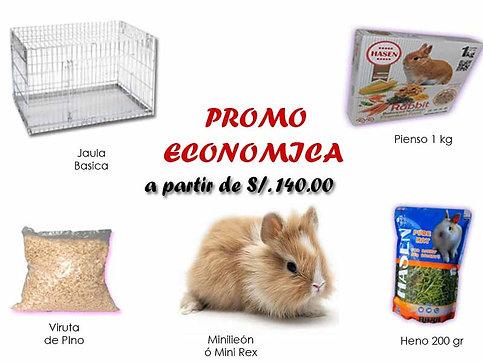 Promo Económica