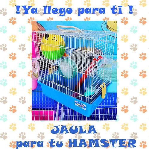 Jaula Hamster  32x20x32