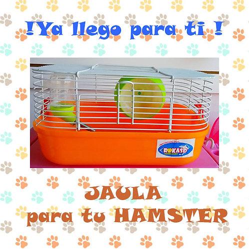 Jaula Hamster 22x18x20