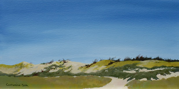 Sandy Neck, Barnstable, Cape Cod, dunes, sand, landscape