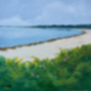 Cape Cod, Little Island, West Falmouth, Cetta, Art, Acrylic, rosa rugosa.