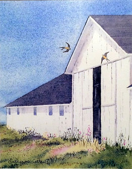 barn, swallows, birds, nature, barn