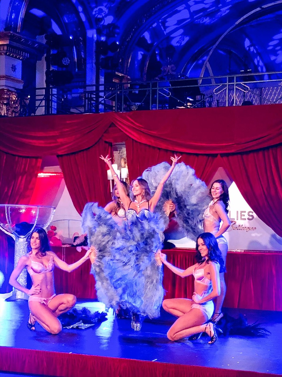 Ballet Fans De Vees