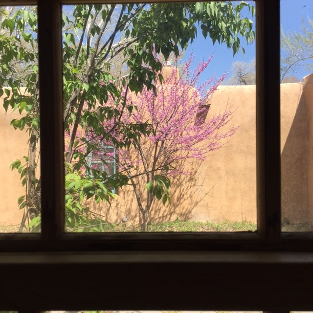 The view from the Chabot house bedroom.