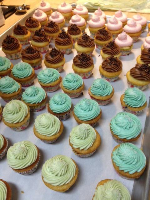cupcake-lineup.jpg