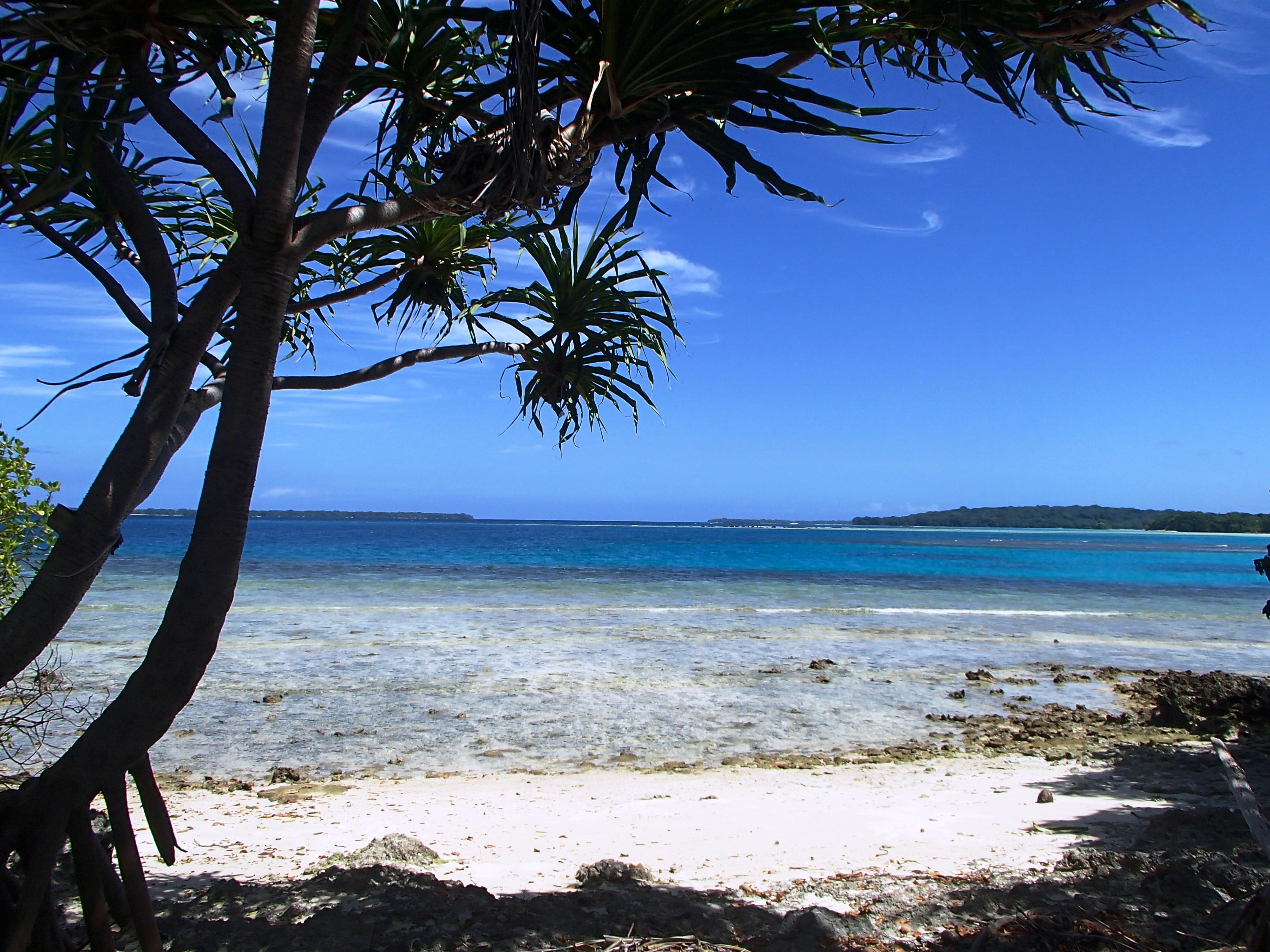 M Island Pics 2014 (9).jpg