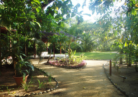 Pathway to the beach and dining terrace