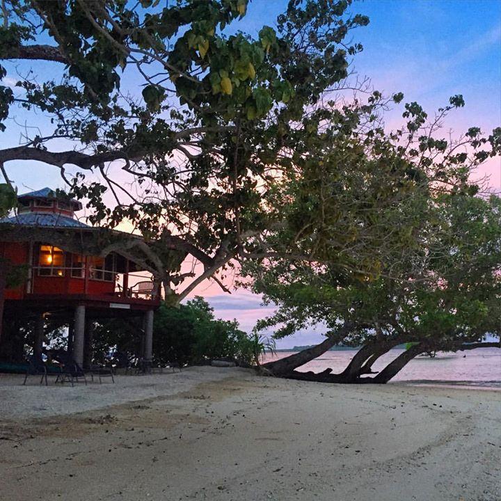The Frangipani at Sunset