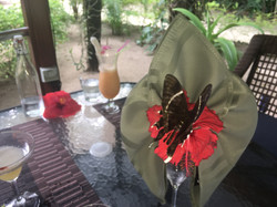 Nature helping with Table decor