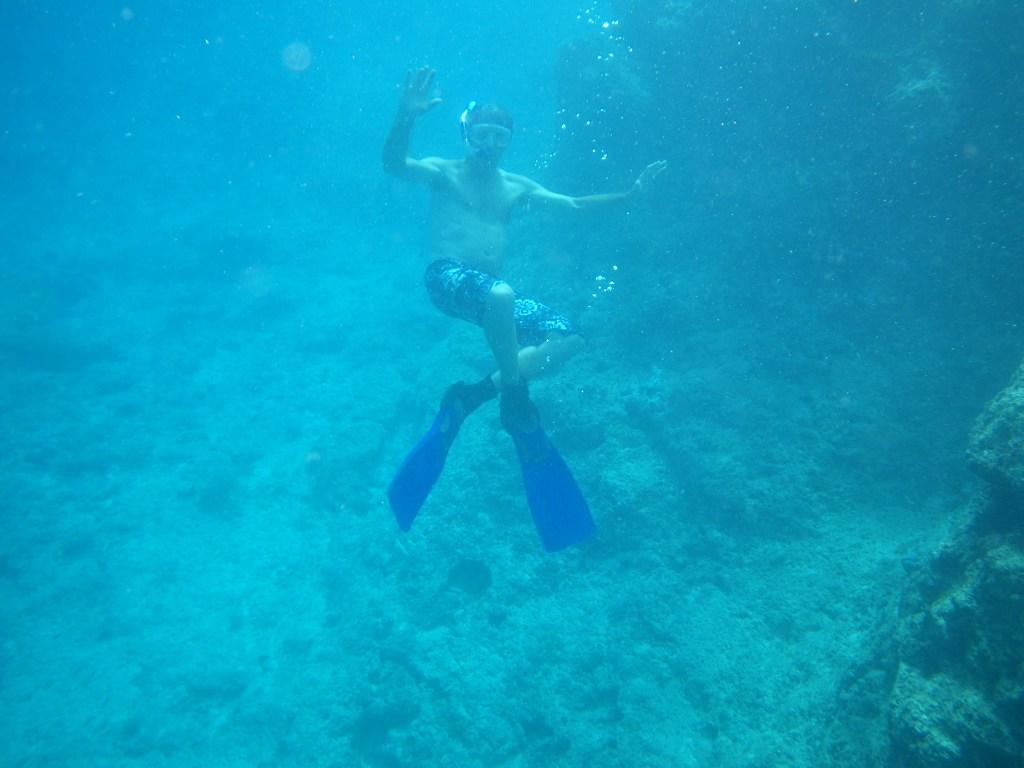Enjoy the Reef!