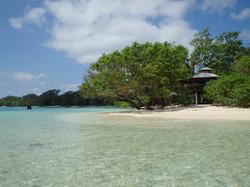 Beach View, The Frangipani