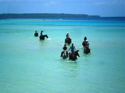 Santo Horse Adventures.jpg