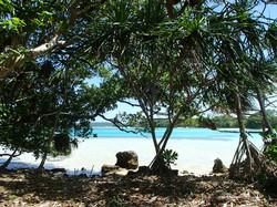 M Island Pics 2014 (1).jpg