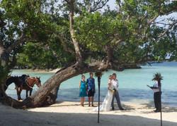 Wedding memories by the sea