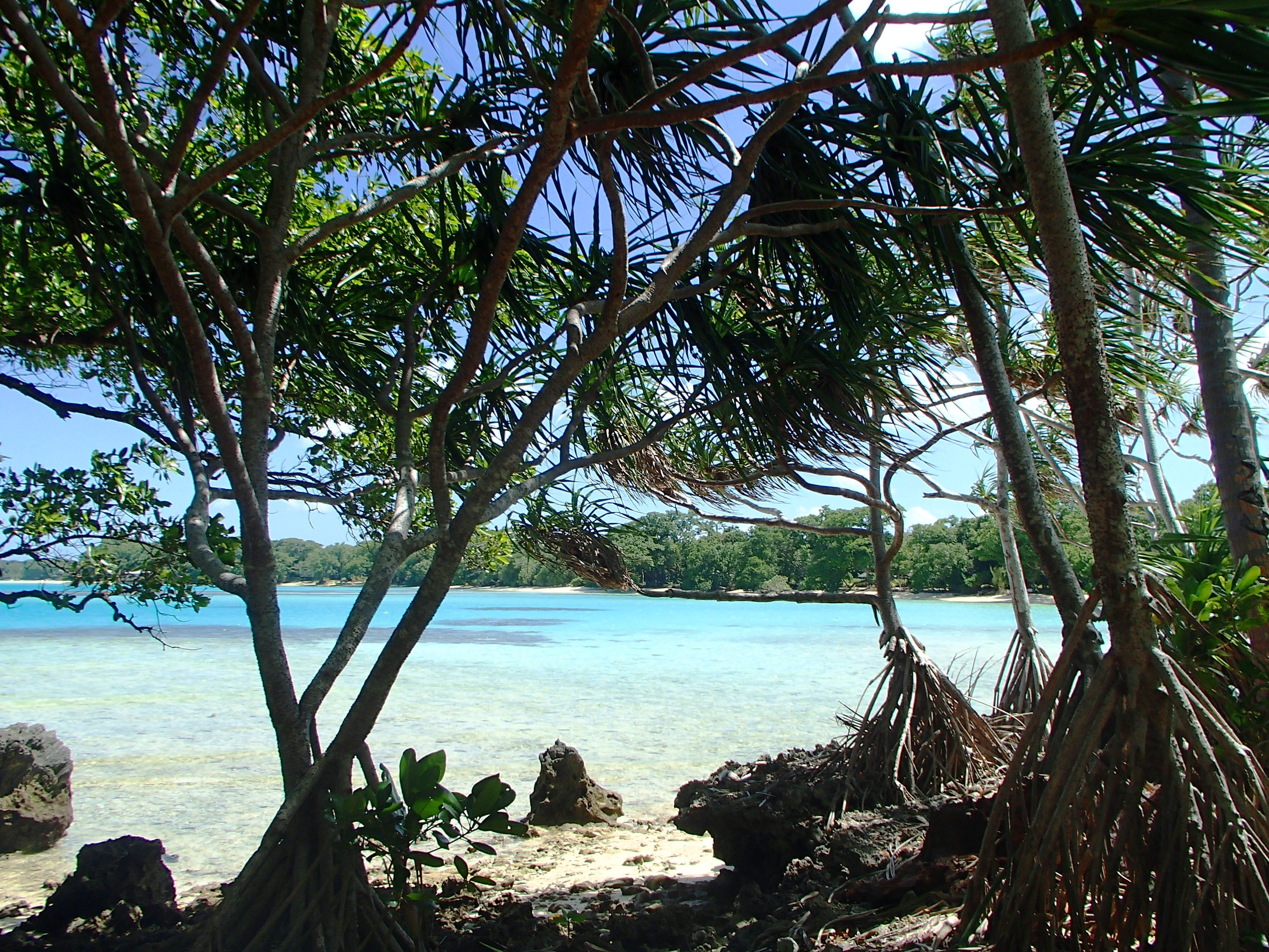 M Island Pics 2014 (2).jpg